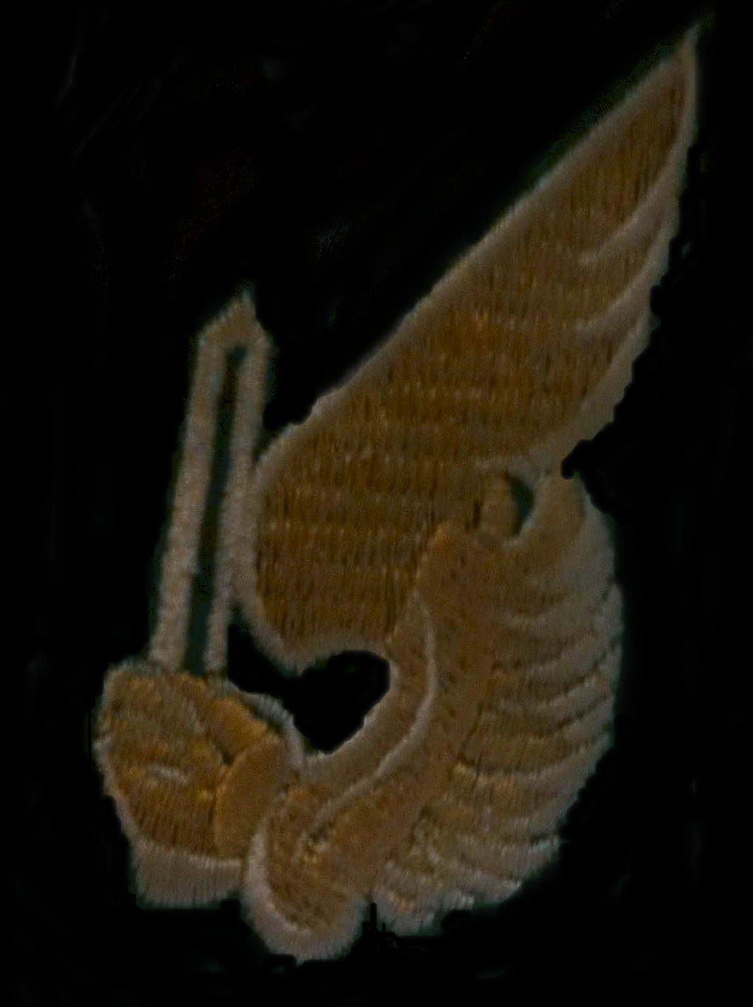 Vietnam Combat Jump Status Badge.  Authority American War Library. www.amervets.com