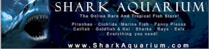 click to Access: http://www.sharkaquarium.com/